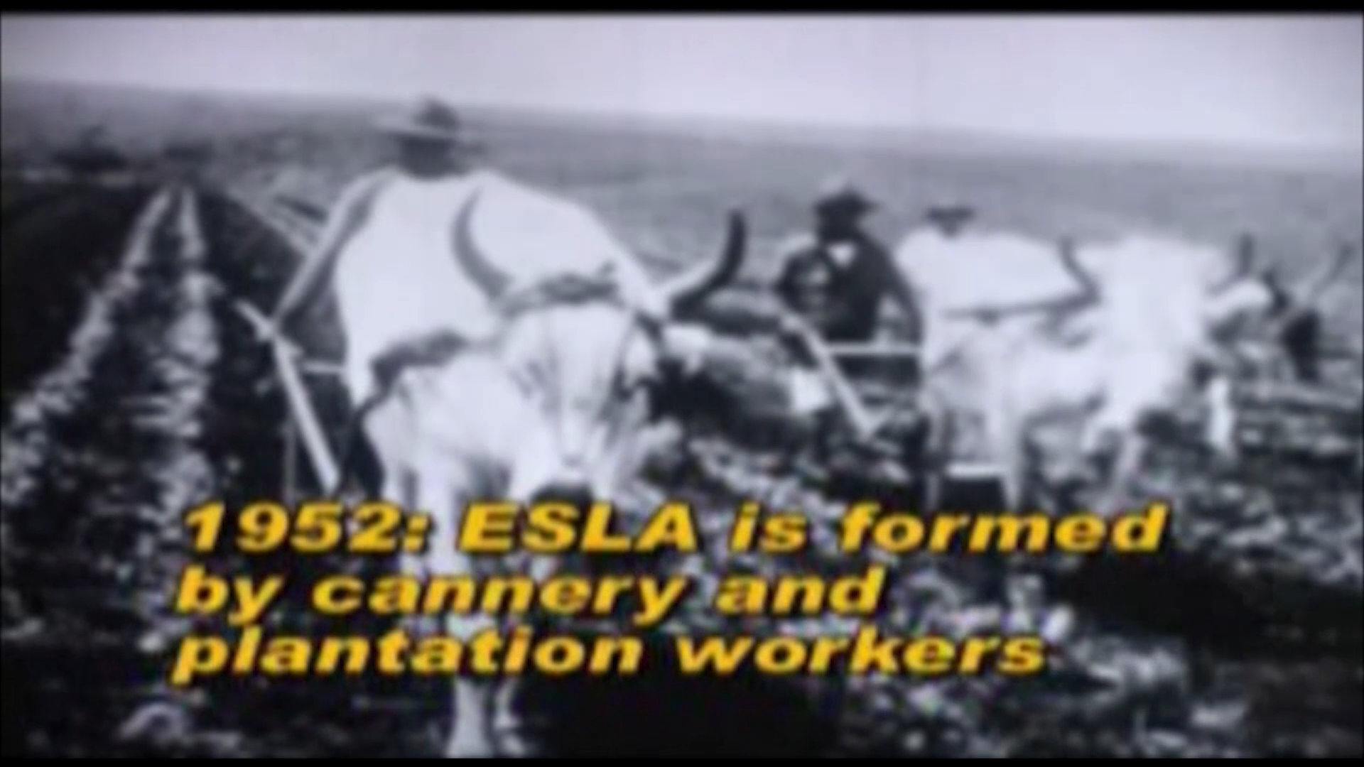 ESLA is formed by cannery and plantation workers