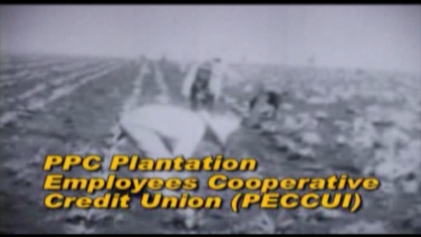 PPC Plantation Employees Cooperative Credit Union