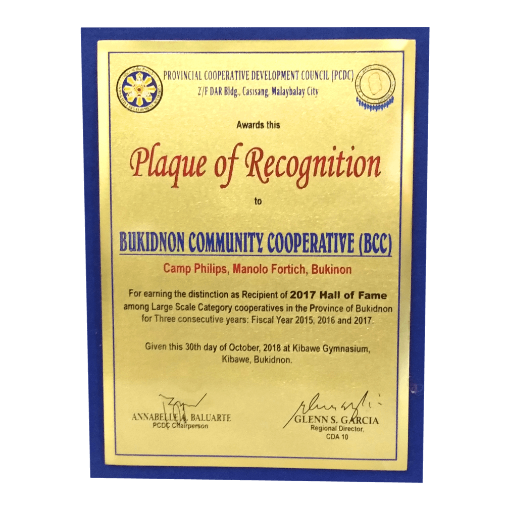 BCC with PCDC Plaque Of Recognition